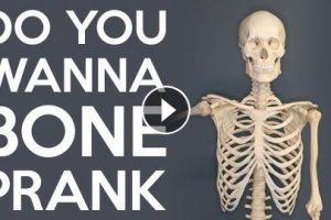 DO YOU WANNA BONE PRANK