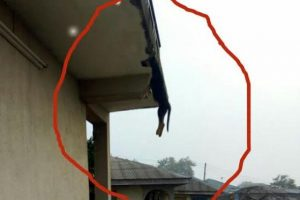 Lagos landlord allegedly hangs tenant's dog on the ceiling (photo)