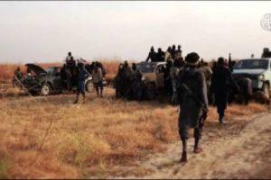Boko Haram Members Straight Out Of Sambisa 'Kill 26' At Adamawa Village