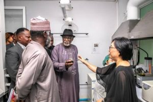 'We Have Begun Procedures To Make Cannabis Cultivation Legal', Says Akeredolu